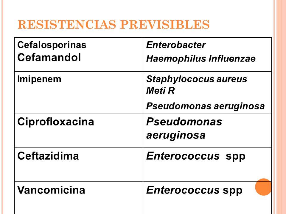 RESISTENCIAS PREVISIBLES Cefalosporinas Cefamandol Enterobacter Haemophilus Influenzae ImipenemStaphylococus aureus Meti R Pseudomonas aeruginosa CiprofloxacinaPseudomonas aeruginosa CeftazidimaEnterococcus spp VancomicinaEnterococcus spp