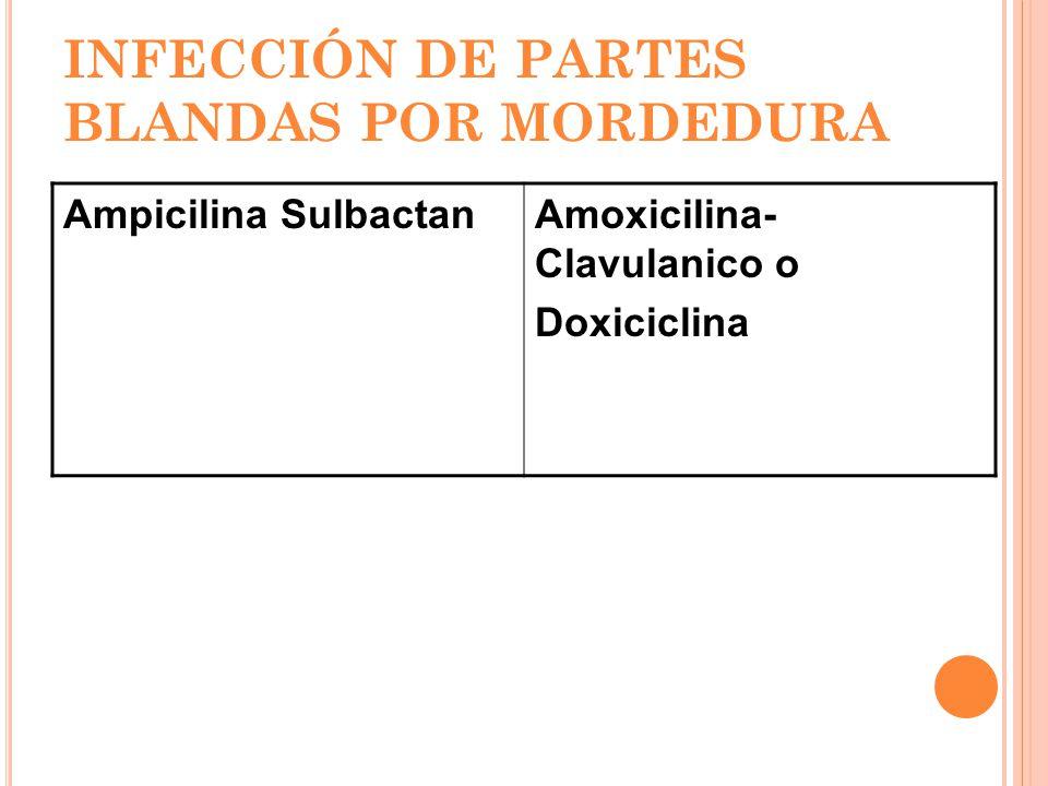 INFECCIÓN DE PARTES BLANDAS POR MORDEDURA Ampicilina SulbactanAmoxicilina- Clavulanico o Doxiciclina