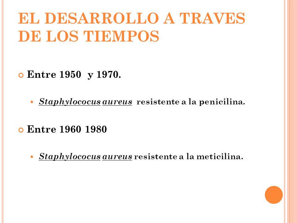 EL DESARROLLO A TRAVES DE LOS TIEMPOS Entre 1950 y 1970. Staphylococus aureus resistente a la penicilina. Entre 1960 1980 Staphylococus aureus resiste