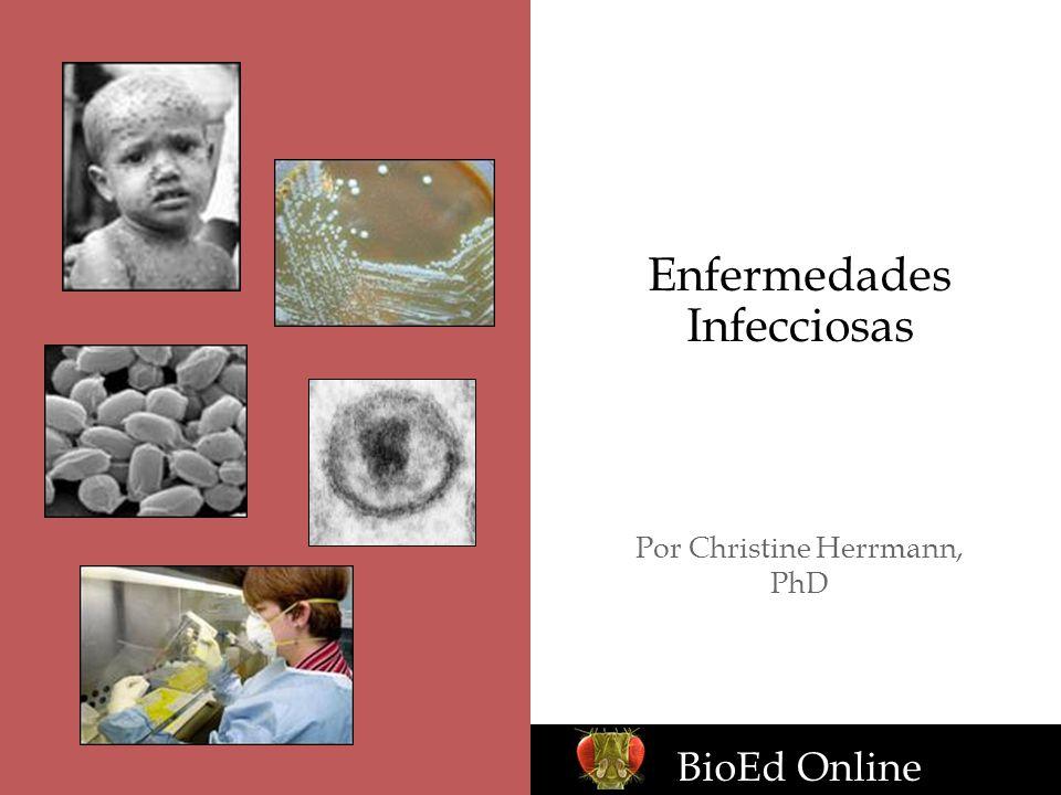 Enfermedades Infecciosas Por Christine Herrmann, PhD BioEd Online