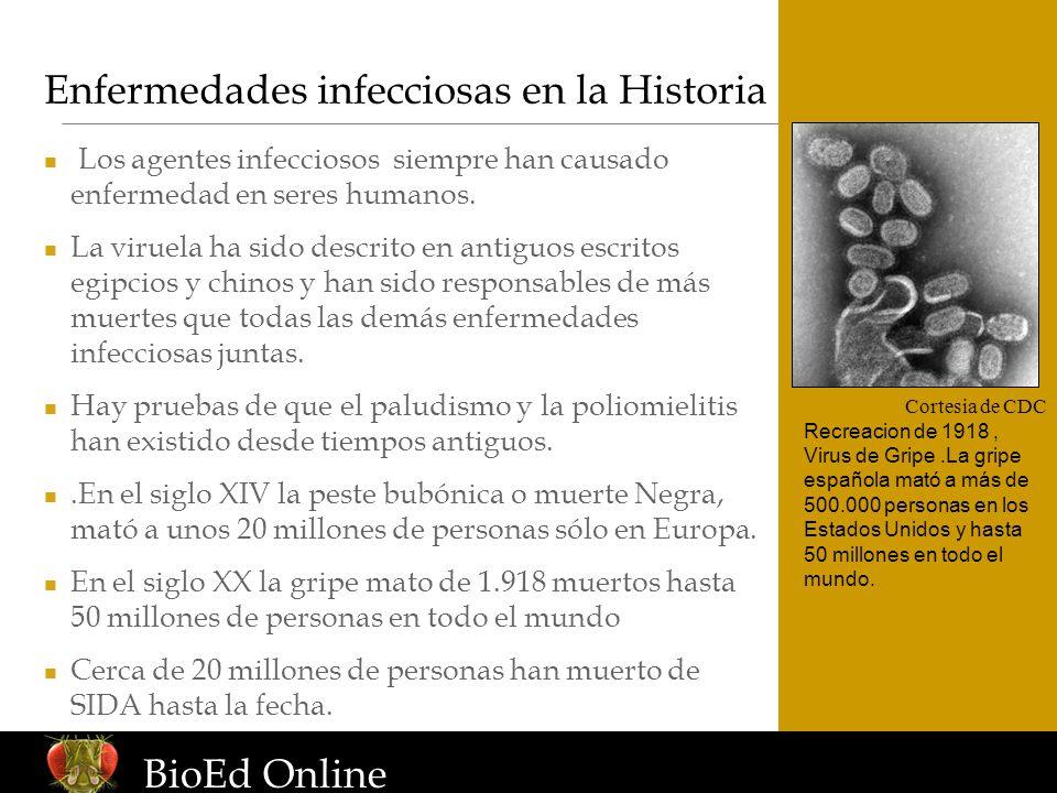 www.BioEdOnline.org Enfermedades infecciosas en la Historia Cortesia de CDC Recreacion de 1918, Virus de Gripe.La gripe española mató a más de 500.000