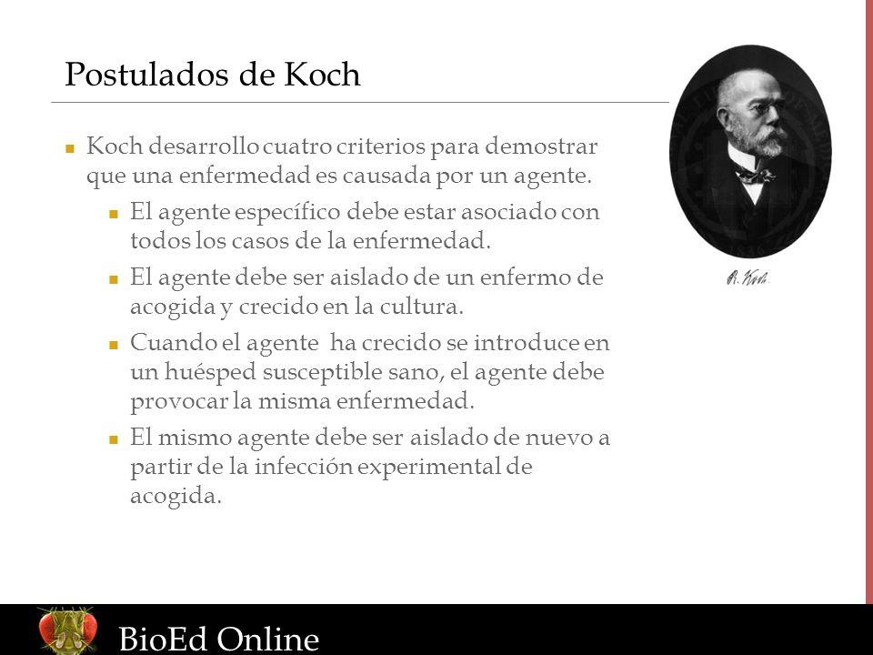 www.BioEdOnline.org Postulados de Koch BioEd Online Koch desarrollo cuatro criterios para demostrar que una enfermedad es causada por un agente. El ag
