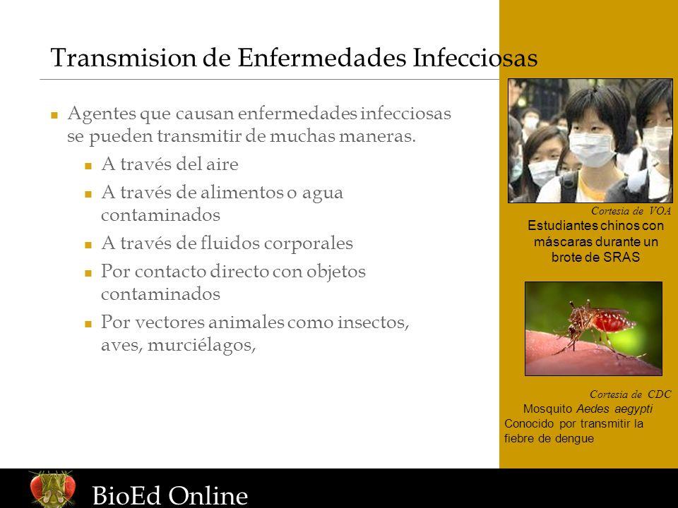 www.BioEdOnline.org Transmision de Enfermedades Infecciosas Cortesia de VOA Estudiantes chinos con máscaras durante un brote de SRAS Cortesia de CDC M