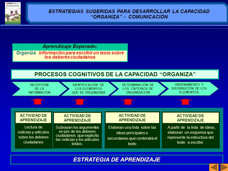 ESTRATEGIAS SUGERIDAS PARA DESARROLLAR LA CAPACIDAD ORGANIZA - COMUNICACIÓN DETERMINACIÓN DE LOS CRITERIOS DE ORGANIZACIÓN ORDENAMIENTO Y DISTRIBUCIÓN
