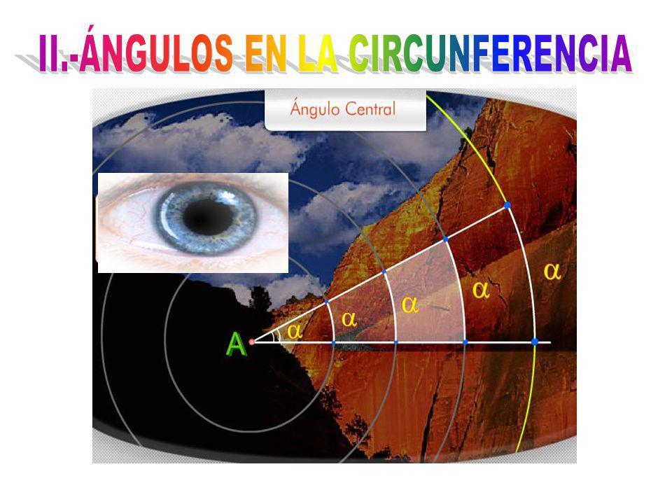 1.- MEDIDA DEL ÁNGULO CENTRAL.- Es igual a la medida del arco que se opone.