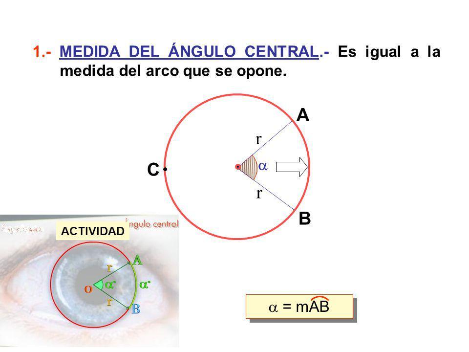 1.- MEDIDA DEL ÁNGULO CENTRAL.- Es igual a la medida del arco que se opone. A B C r r = mAB ACTIVIDAD