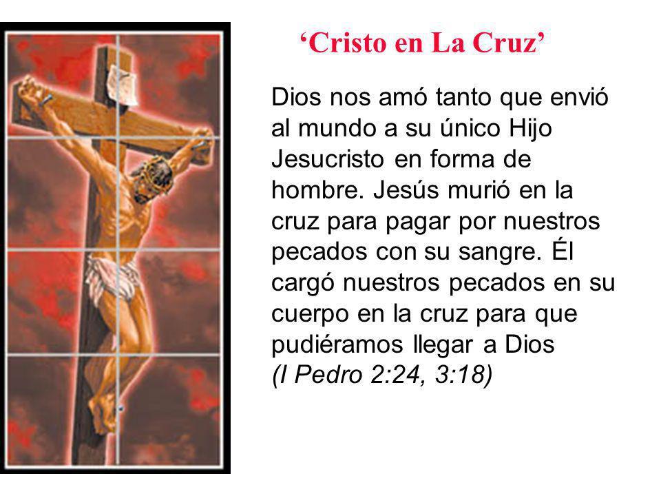 Dios nos amó tanto que envió al mundo a su único Hijo Jesucristo en forma de hombre.