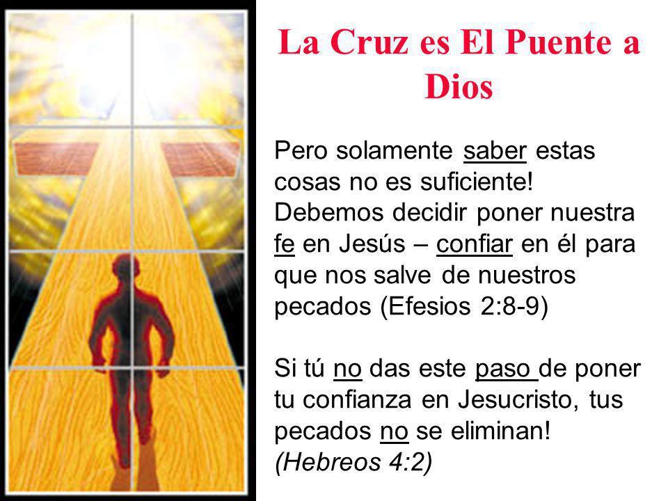 Las Alternativas: Cielo e Infierno La Biblia dice que quien cree en Jesús tiene vida eterna y no es condenado.