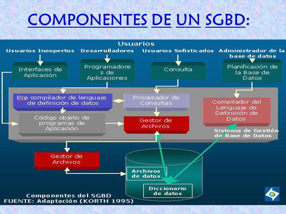 COMPONENTES DE UN SGBD: