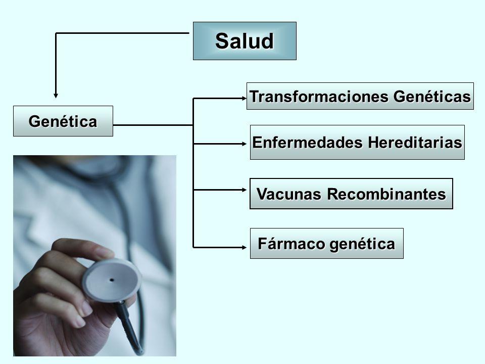 Salud Genética Fármaco genética Enfermedades Hereditarias Transformaciones Genéticas Vacunas Recombinantes