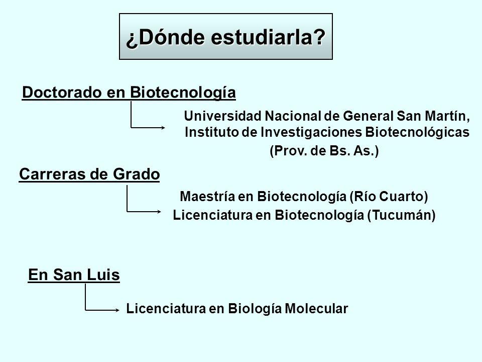 ¿Dónde estudiarla? Doctorado en Biotecnología Universidad Nacional de General San Martín, Instituto de Investigaciones Biotecnológicas (Prov. de Bs. A