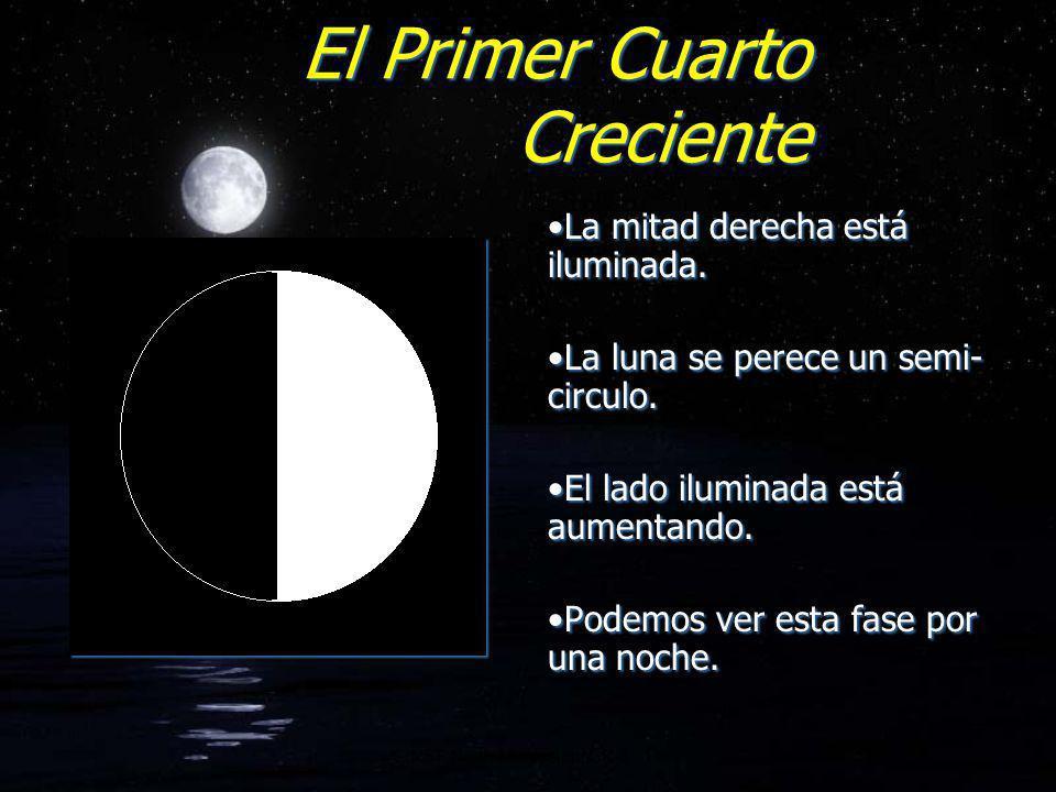 El Primer Cuarto Creciente La mitad derecha está iluminada. La luna se perece un semi- circulo. El lado iluminada está aumentando. Podemos ver esta fa