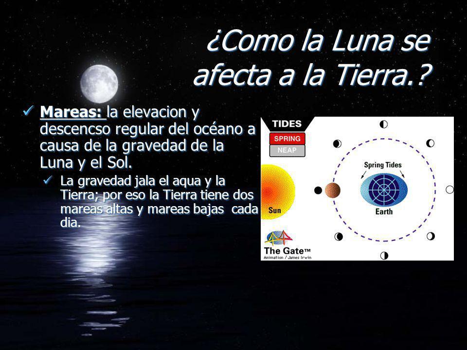 ¿Como la Luna se afecta a la Tierra.? Mareas: la elevacion y descencso regular del océano a causa de la gravedad de la Luna y el Sol. La gravedad jala