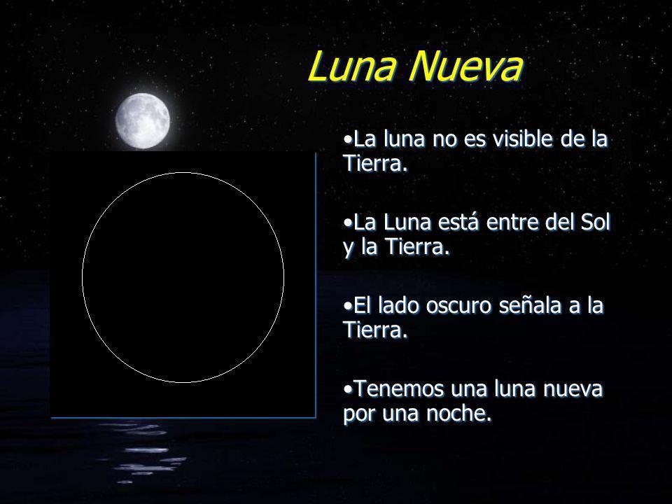 Luna Creciente Creciente- significa que el lado iluminado está aumentando.