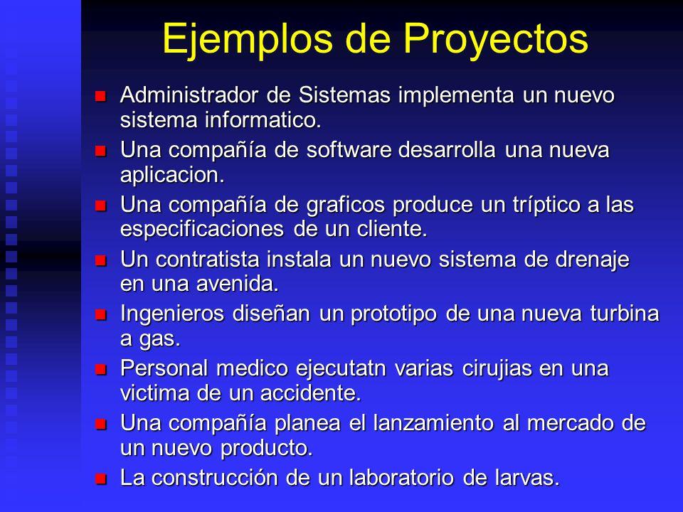 Ejemplos de Proyectos Administrador de Sistemas implementa un nuevo sistema informatico.