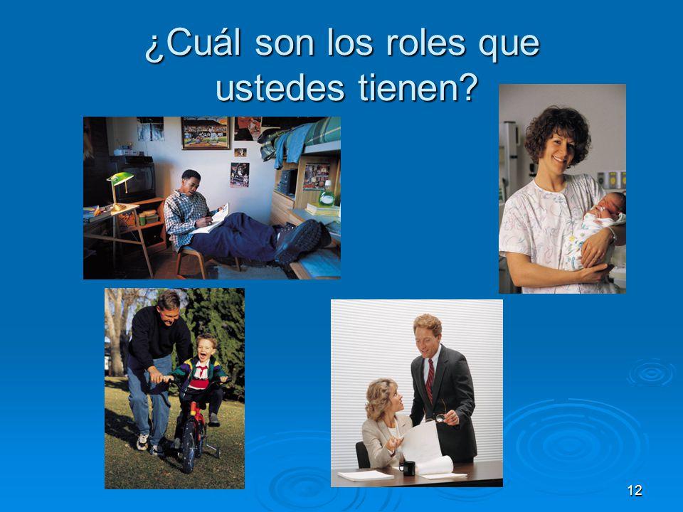 12 ¿Cuál son los roles que ustedes tienen?
