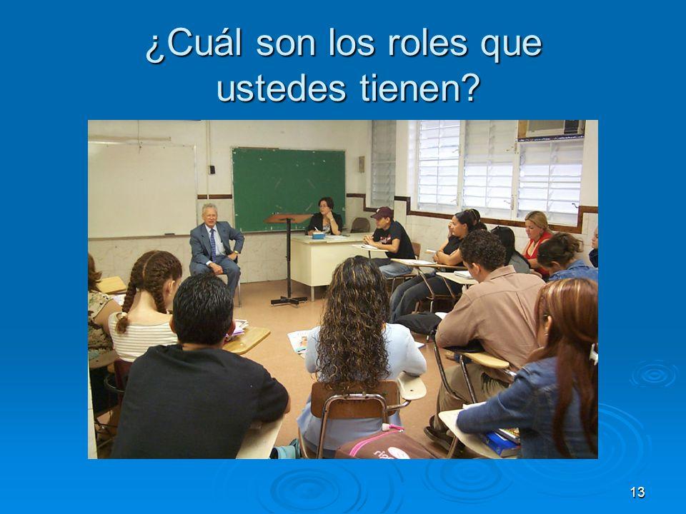 13 ¿Cuál son los roles que ustedes tienen?