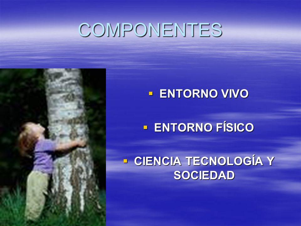 COMPONENTES ENTORNO VIVO ENTORNO VIVO ENTORNO FÍSICO ENTORNO FÍSICO CIENCIA TECNOLOGÍA Y SOCIEDAD CIENCIA TECNOLOGÍA Y SOCIEDAD