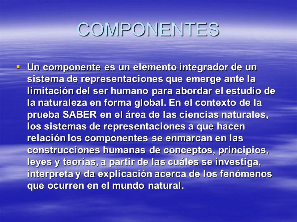 COMPONENTES Un componente es un elemento integrador de un sistema de representaciones que emerge ante la limitación del ser humano para abordar el est