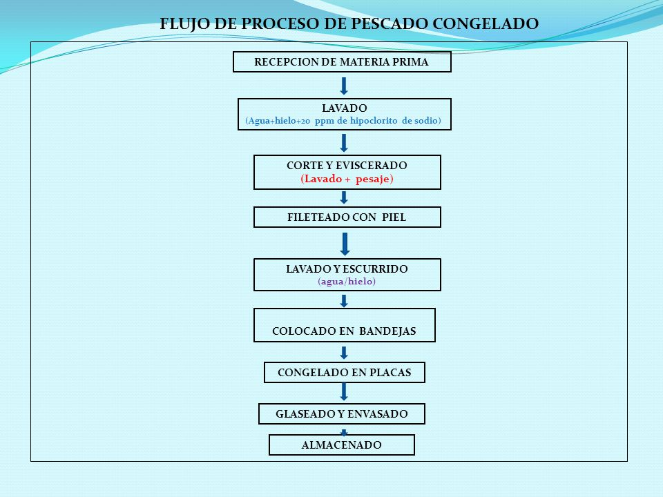 FLUJO DE PROCESO DE PESCADO CONGELADO RECEPCION DE MATERIA PRIMA LAVADO (Agua+hielo+20 ppm de hipoclorito de sodio) CORTE Y EVISCERADO (Lavado + pesaje) FILETEADO CON PIEL LAVADO Y ESCURRIDO (agua/hielo) COLOCADO EN BANDEJAS CONGELADO EN PLACAS GLASEADO Y ENVASADO ALMACENADO