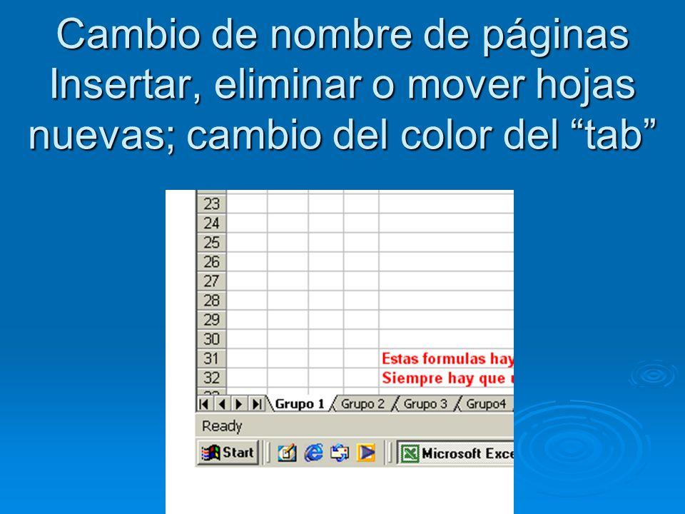 Cambio de nombre de páginas Insertar, eliminar o mover hojas nuevas; cambio del color del tab