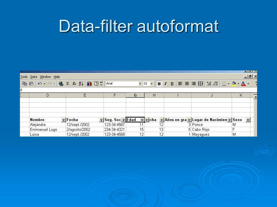 Data-filter autoformat