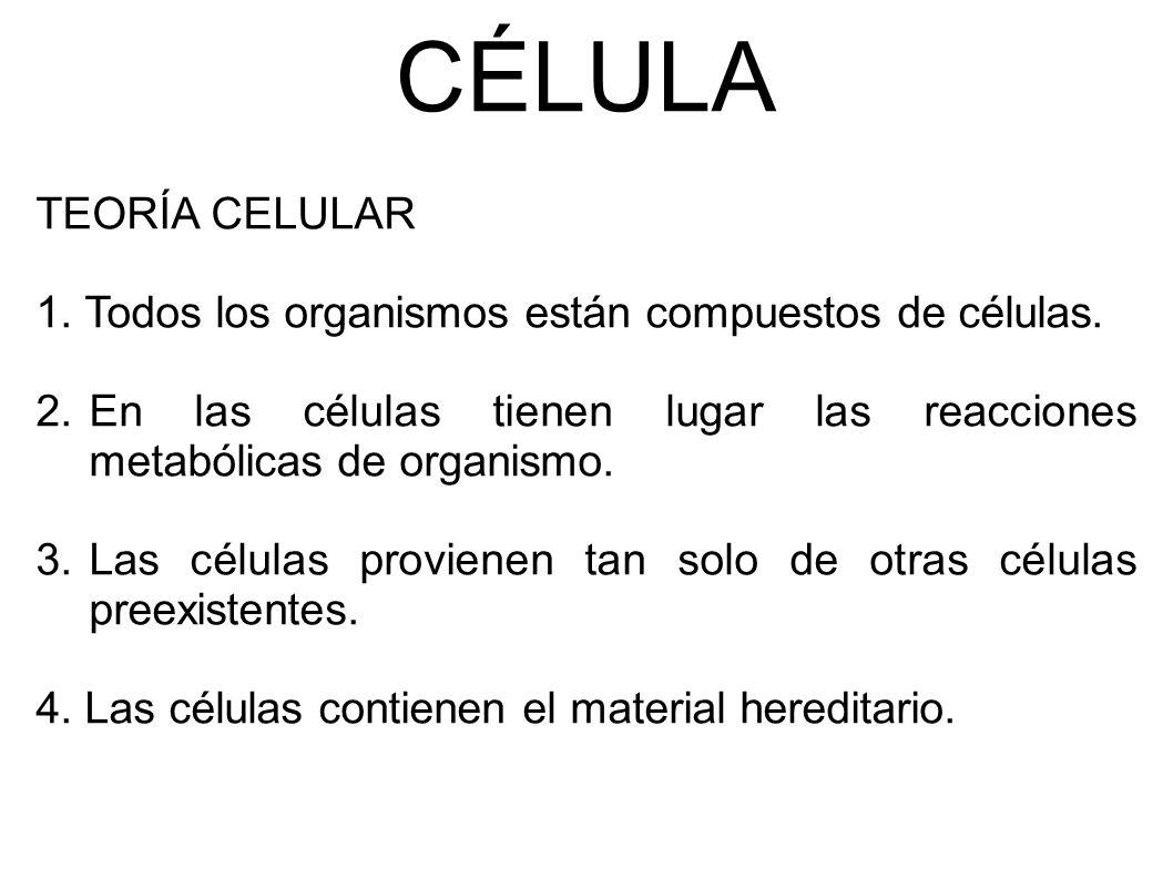 CÉLULA TEORÍA CELULAR 1. Todos los organismos están compuestos de células.