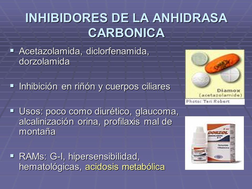 INHIBIDORES DE LA ANHIDRASA CARBONICA Acetazolamida, diclorfenamida, dorzolamida Acetazolamida, diclorfenamida, dorzolamida Inhibición en riñón y cuerpos ciliares Inhibición en riñón y cuerpos ciliares Usos: poco como diurético, glaucoma, alcalinización orina, profilaxis mal de montaña Usos: poco como diurético, glaucoma, alcalinización orina, profilaxis mal de montaña RAMs: G-I, hipersensibilidad, hematológicas, acidosis metabólica RAMs: G-I, hipersensibilidad, hematológicas, acidosis metabólica