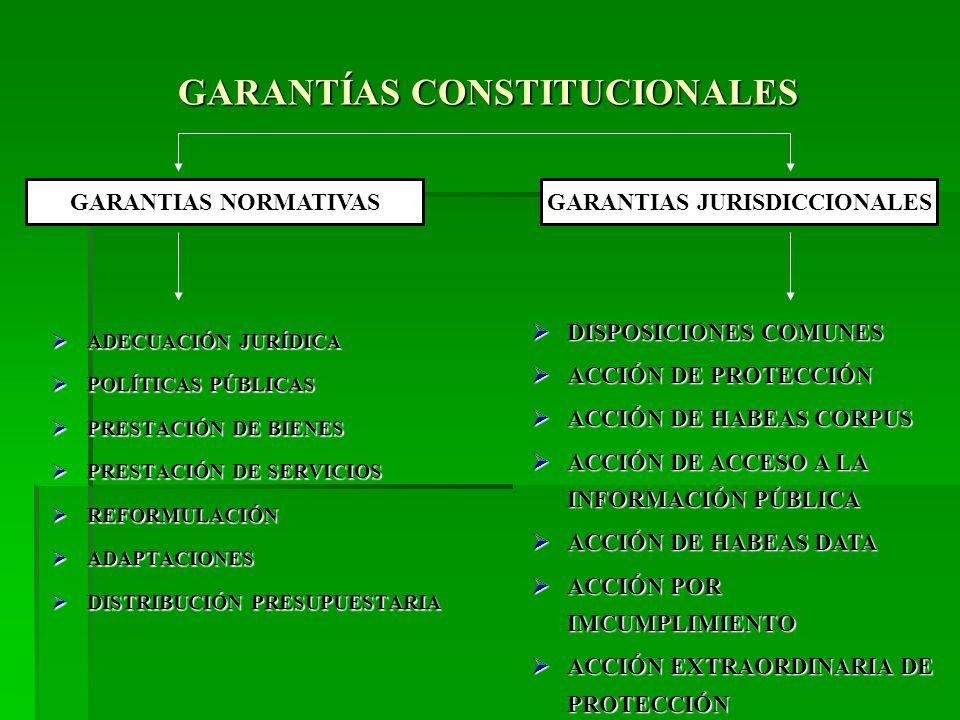 GARANTÍAS CONSTITUCIONALES ADECUACIÓN JURÍDICA ADECUACIÓN JURÍDICA POLÍTICAS PÚBLICAS POLÍTICAS PÚBLICAS PRESTACIÓN DE BIENES PRESTACIÓN DE BIENES PRESTACIÓN DE SERVICIOS PRESTACIÓN DE SERVICIOS REFORMULACIÓN REFORMULACIÓN ADAPTACIONES ADAPTACIONES DISTRIBUCIÓN PRESUPUESTARIA DISTRIBUCIÓN PRESUPUESTARIA GARANTIAS JURISDICCIONALESGARANTIAS NORMATIVAS DISPOSICIONES COMUNES DISPOSICIONES COMUNES ACCIÓN DE PROTECCIÓN ACCIÓN DE PROTECCIÓN ACCIÓN DE HABEAS CORPUS ACCIÓN DE HABEAS CORPUS ACCIÓN DE ACCESO A LA INFORMACIÓN PÚBLICA ACCIÓN DE ACCESO A LA INFORMACIÓN PÚBLICA ACCIÓN DE HABEAS DATA ACCIÓN DE HABEAS DATA ACCIÓN POR IMCUMPLIMIENTO ACCIÓN POR IMCUMPLIMIENTO ACCIÓN EXTRAORDINARIA DE PROTECCIÓN ACCIÓN EXTRAORDINARIA DE PROTECCIÓN