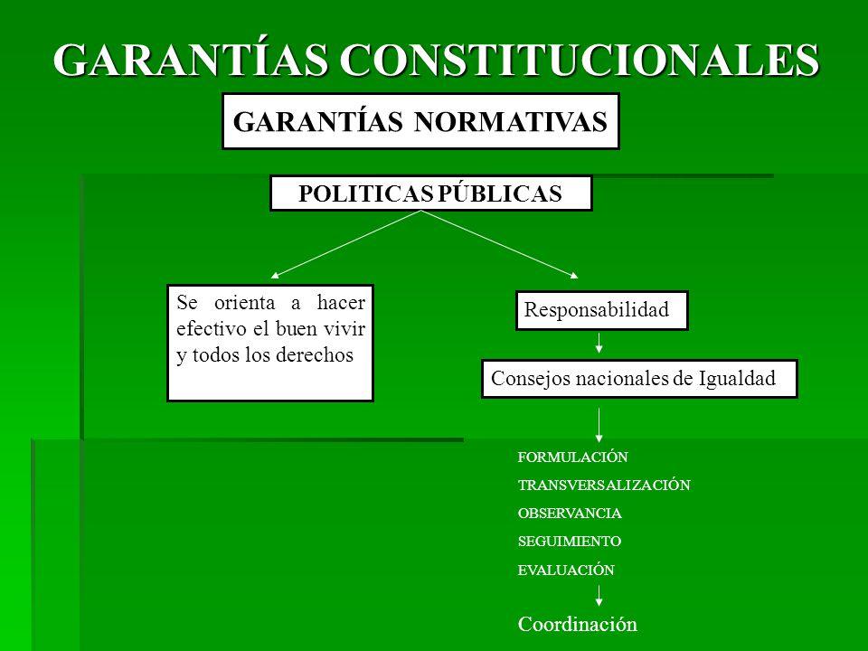 GARANTÍAS CONSTITUCIONALES GARANTÍAS NORMATIVAS POLITICAS PÚBLICAS Se orienta a hacer efectivo el buen vivir y todos los derechos Responsabilidad Consejos nacionales de Igualdad FORMULACIÓN TRANSVERSALIZACIÓN OBSERVANCIA SEGUIMIENTO EVALUACIÓN Coordinación