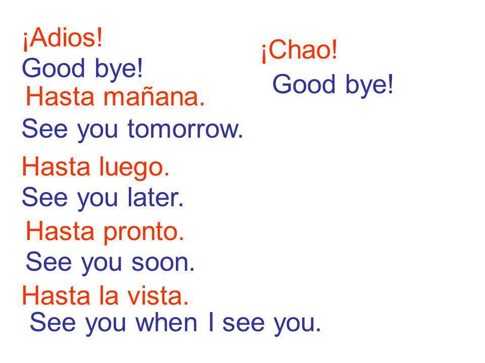 ¡Adios.Hasta mañana. See you tomorrow. Good bye. Hasta luego.