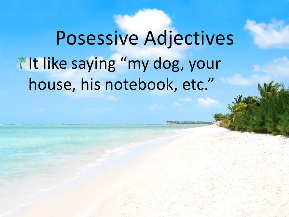 Here are the possessive adjectives in Spanish!