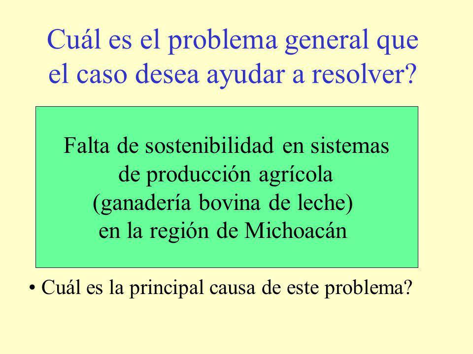 Cuál es el problema general que el caso desea ayudar a resolver.
