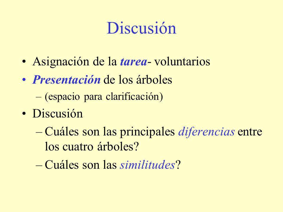 Discusión Asignación de la tarea- voluntarios Presentación de los árboles –(espacio para clarificación) Discusión –Cuáles son las principales diferencias entre los cuatro árboles.
