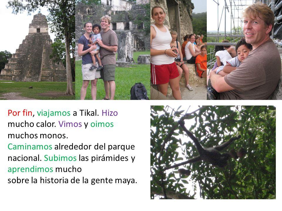 Por fin, viajamos a Tikal. Hizo mucho calor. Vimos y oimos muchos monos.