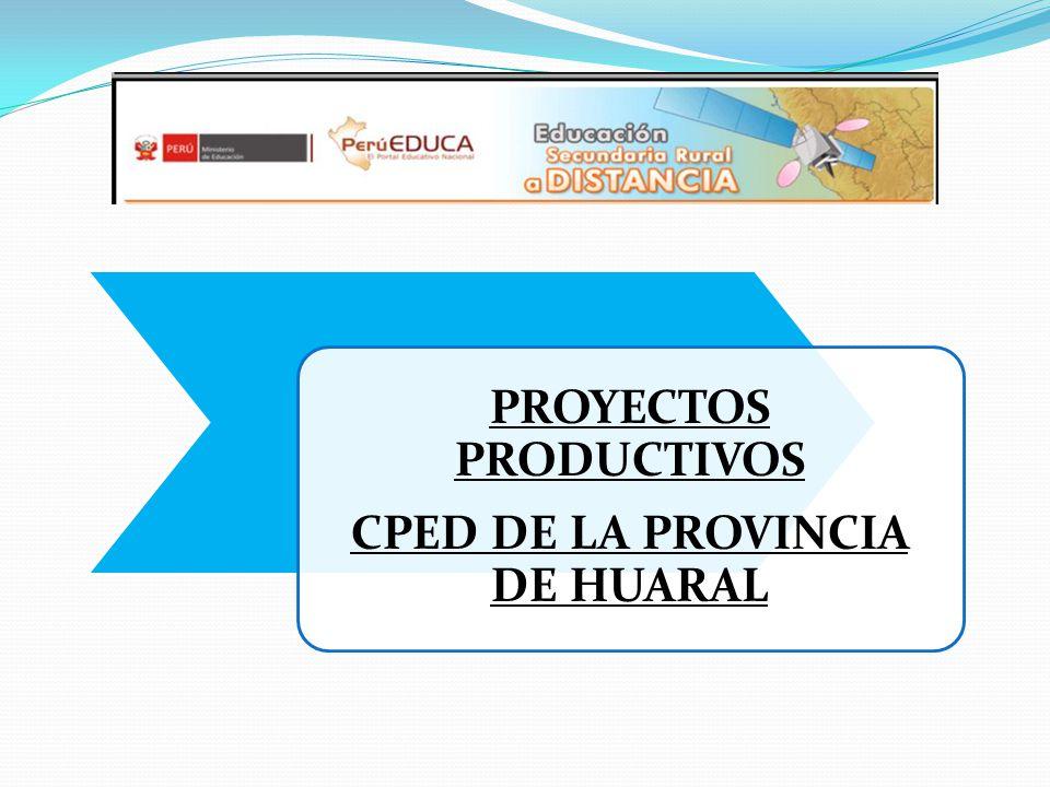 PROYECTOS PRODUCTIVOS CPED DE LA PROVINCIA DE HUARAL