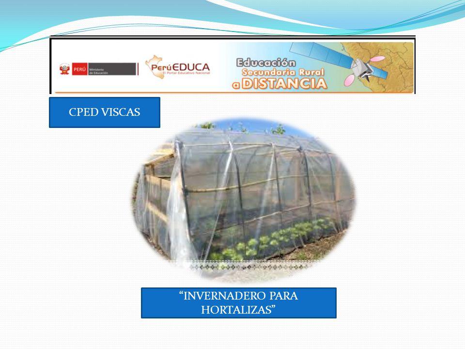 CPED VISCAS INVERNADERO PARA HORTALIZAS