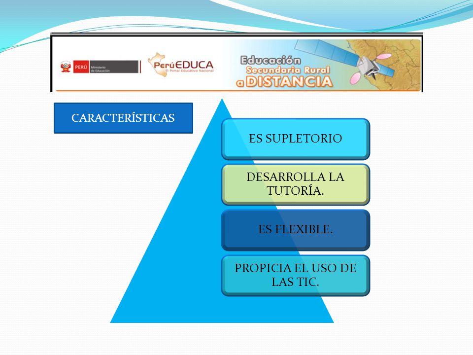 CARACTERÍSTIC AS PROMUEVE Y ORGANIZA LOS PROYECTOS PRODUCTIVOS.