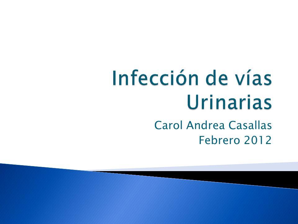 Carol Andrea Casallas Febrero 2012