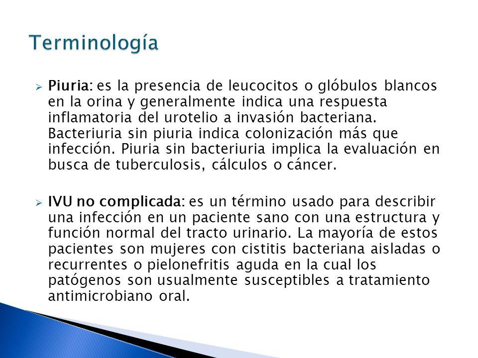 Piuria: es la presencia de leucocitos o glóbulos blancos en la orina y generalmente indica una respuesta inflamatoria del urotelio a invasión bacteriana.