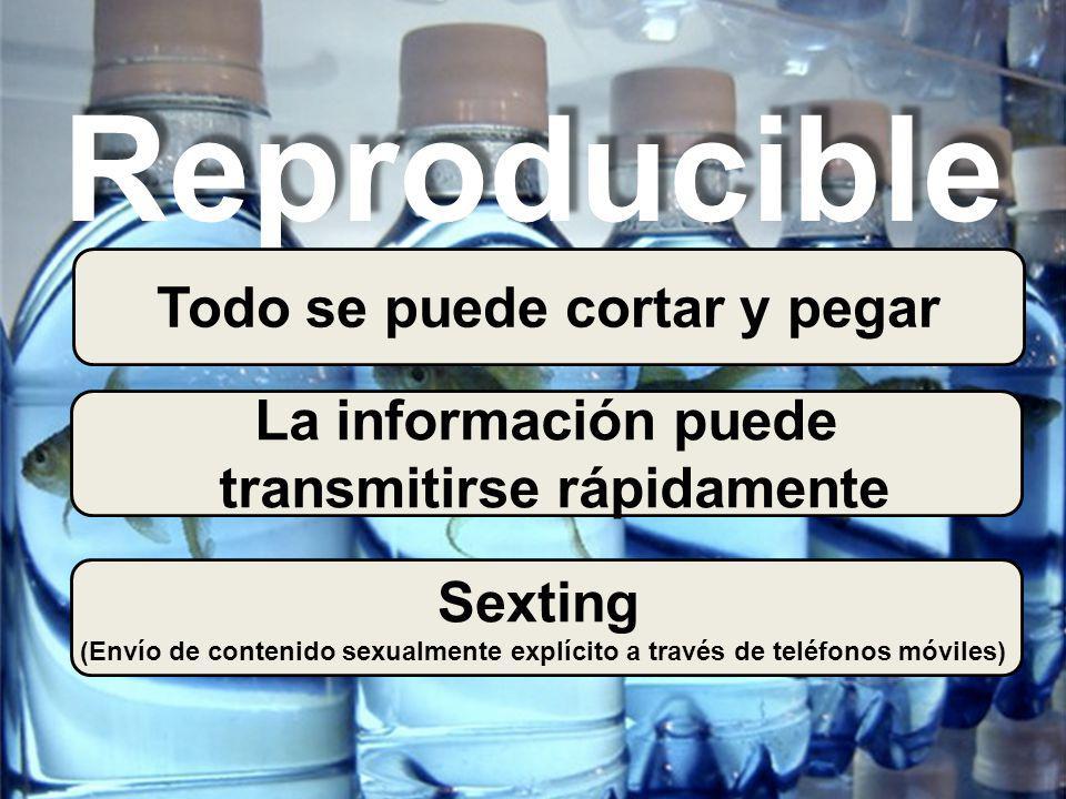 Reproducible Todo se puede cortar y pegar La información puede transmitirse rápidamente Sexting (Envío de contenido sexualmente explícito a través de teléfonos móviles)