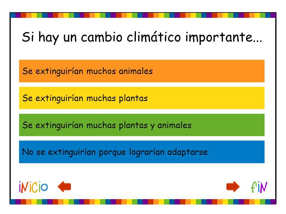 Si hay un cambio climático importante... Se extinguirían muchas plantas Se extinguirían muchas plantas y animales No se extinguirían porque lograrían
