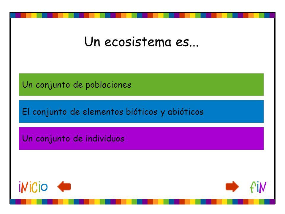 Un ecosistema es... Un conjunto de poblaciones El conjunto de elementos bióticos y abióticos Un conjunto de individuos