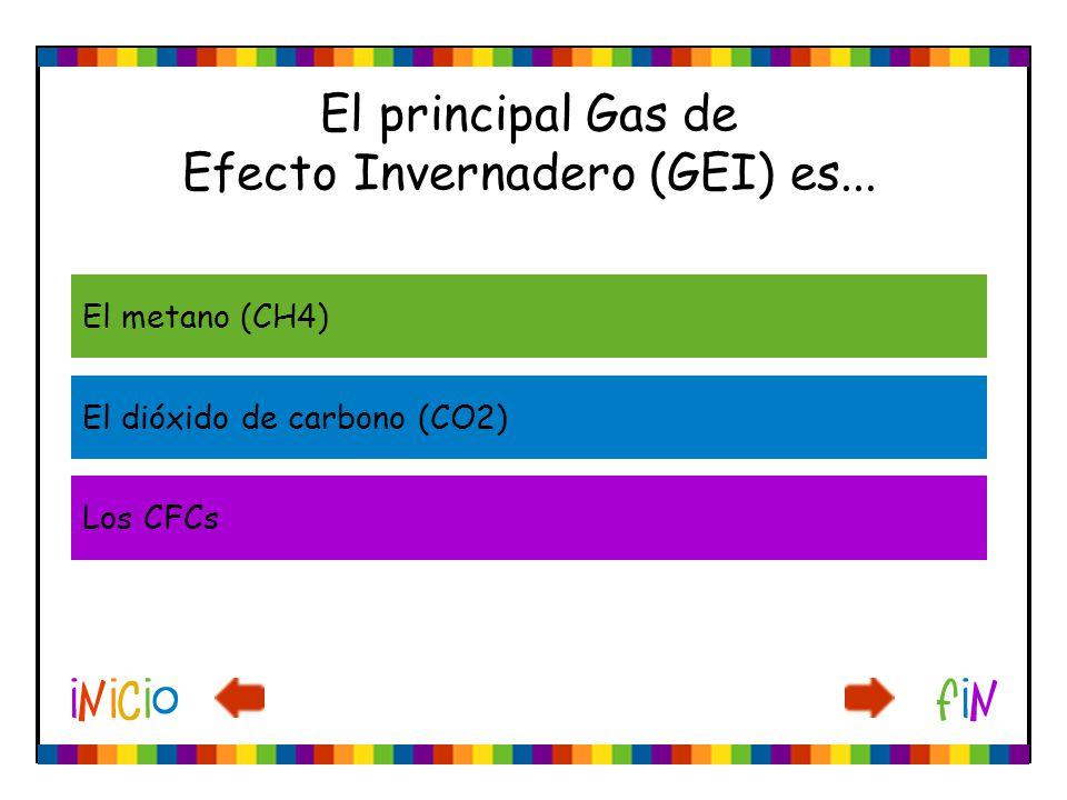 El principal Gas de Efecto Invernadero (GEI) es... El metano (CH4) El dióxido de carbono (CO2) Los CFCs