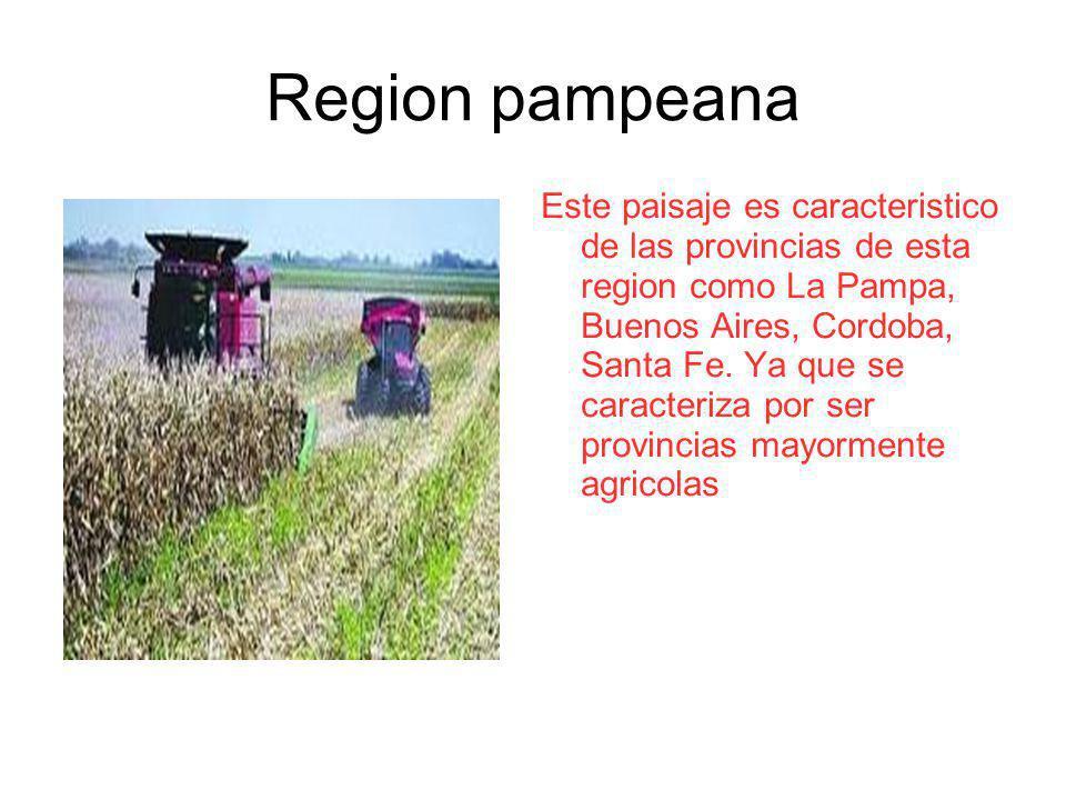 Region pampeana Este paisaje es caracteristico de las provincias de esta region como La Pampa, Buenos Aires, Cordoba, Santa Fe. Ya que se caracteriza