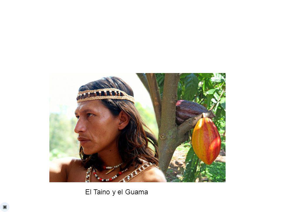 El Taino y el Guama