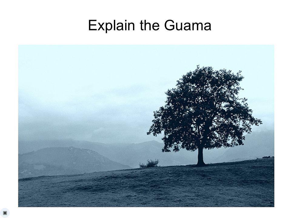 Explain the Guama