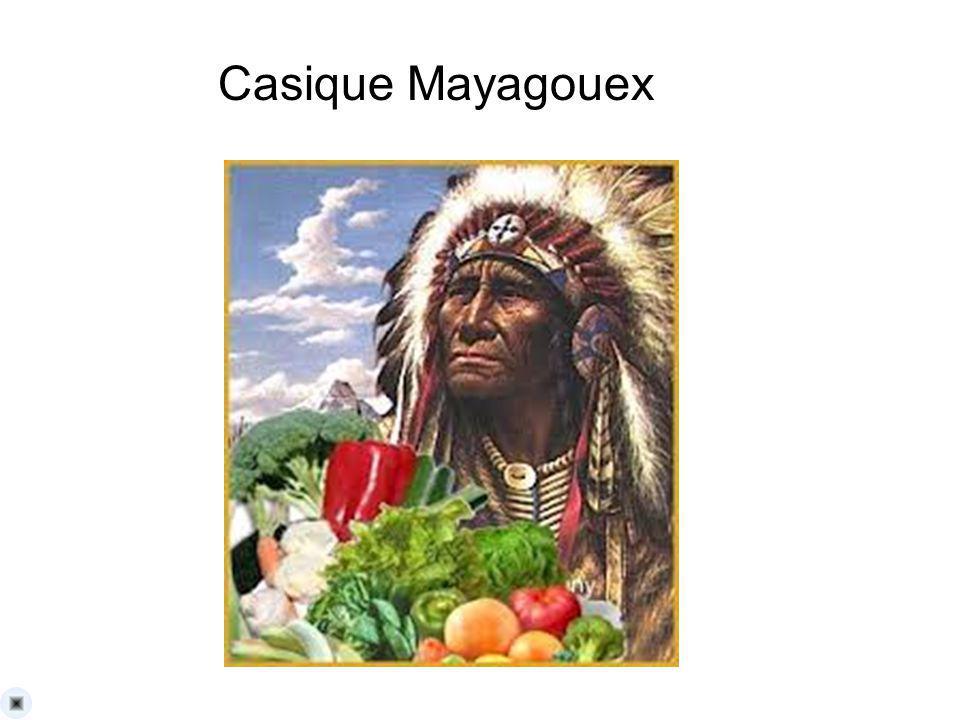 La Reunion del casique Mayagoex para conquistar el arbol