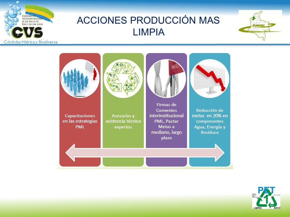 Córdoba Hídrica y Biodiversa ACCIONES PRODUCCIÓN MAS LIMPIA