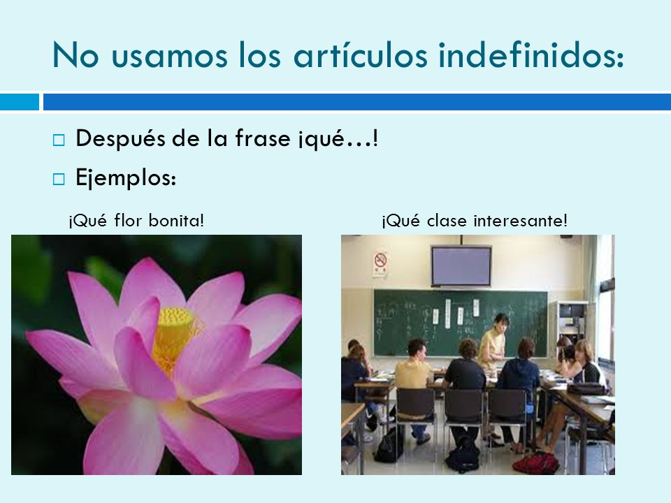 No usamos los artículos indefinidos: Después de la frase ¡qué…! Ejemplos: ¡Qué flor bonita!¡Qué clase interesante!